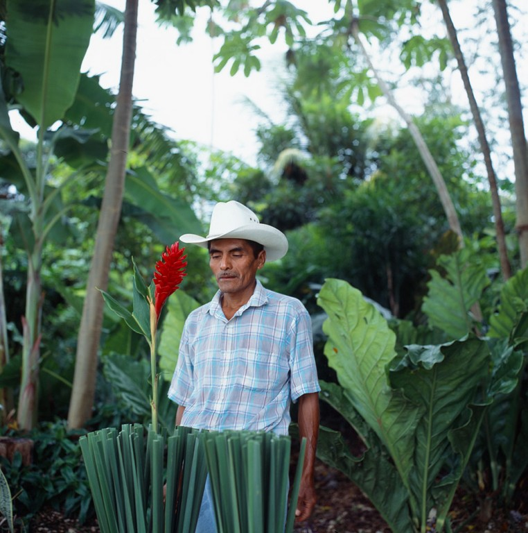 010---Gardener_Flores_Guatemala_People_Show